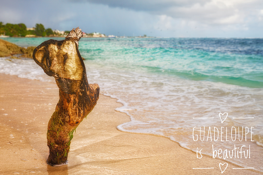 Guadeloupe is Beautiful - Page de Raisins Clairs